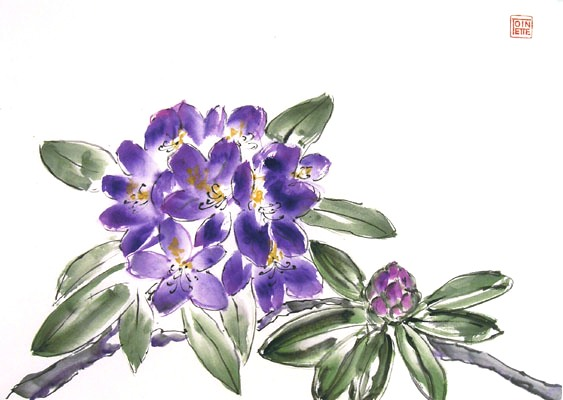 Toinette Lippe painting - Rhododendron 2