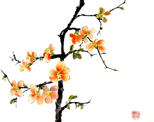 Toinette Lippe paintings - Japanese Quince