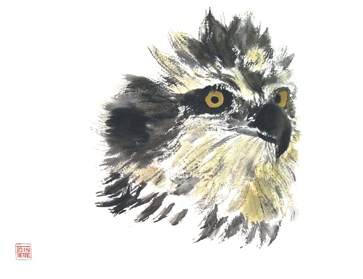 Toinette Lippe painting - Osprey