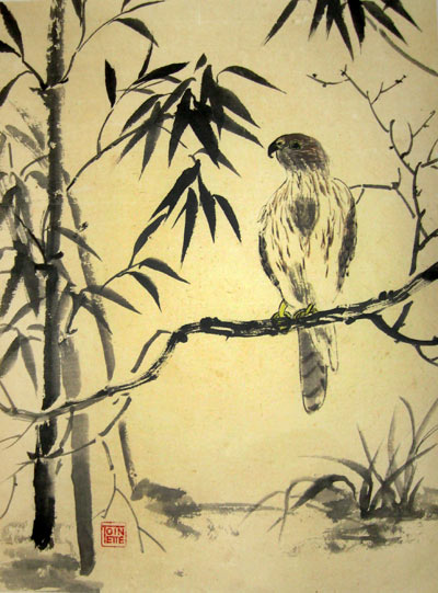 Toinette Lippe painting - Cooper's Hawk
