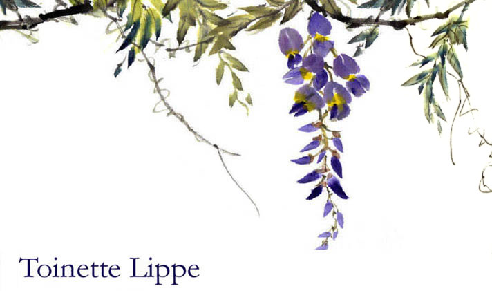 Wisteria by Toinette Lippe